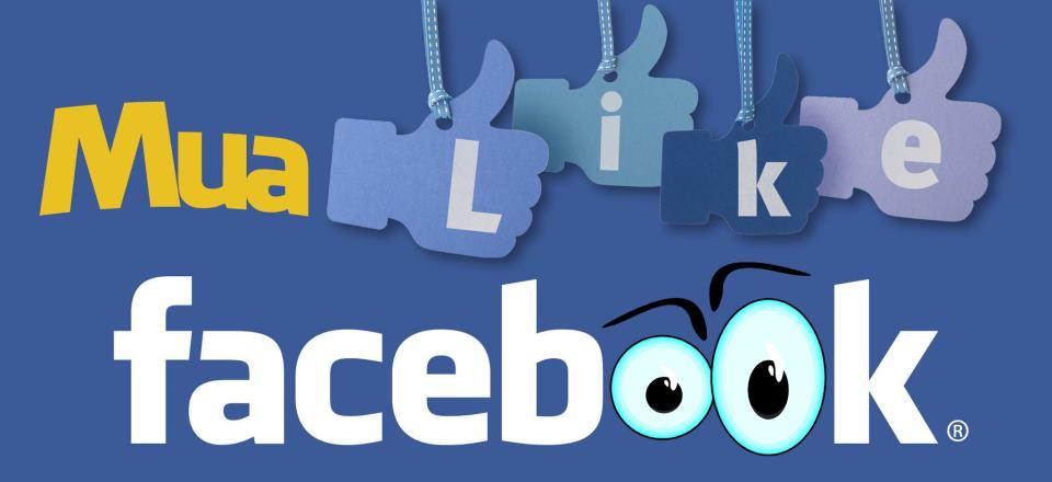 ban hang tren mang co nen mua like facebook1 Mua like Facebook, được gì, mất những gì?