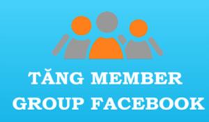 tang thanh vien group facebook gia re 1 300x175 tang thanh vien group facebook gia re 1