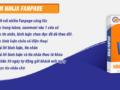 ninjafanpage