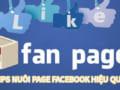 Nuôi page facebook hiệu quả