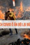 Vì sao dịch Covid ở Ấn Độ lại bùng phát