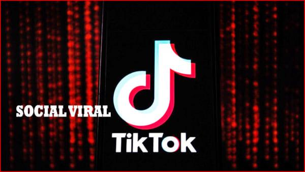 phan mem quang cao tik tok Social Viral e1625889712960 Phần mềm quảng cáo tiktok, tăng follow tiktok 2021 hiệu quả